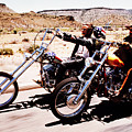 Easy Rider Photo by Matt Haig