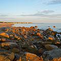 Ebb Tide On Cape Cod Bay by Dianne Cowen
