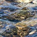 Ebbing Tide 1 by William Selander
