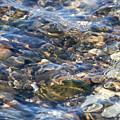 Ebbing Tide 2 by William Selander