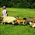 Ecclesia-the Joyful Flock by Anastasia Savage Ealy