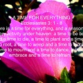 Ecclesiastes 3 A Time For Everything by Debra Lynch