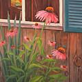 Echinacea Flower by Elaine Farmer