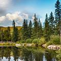 Echo Lake 2 by Angelina Vick