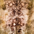 Eco Dyed Tapestry On Cotton by Patti Shonek