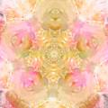 Eco Print Rose Mandala by Artzmakerz