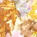 Eco Print 010b by Artzmakerz