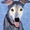 Eddie - Greyhound by Terri Mills