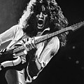 Eddie Van Halen - Black And White by Tom Carlton