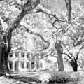 Eden Plantation A Florida State Park by John Harmon