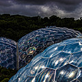 Eden Project Cornwall by Martin Newman