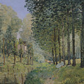Edge Of The Wood by Alfred Sisley