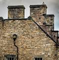 Edinburgh Roof Line by Jean Noren