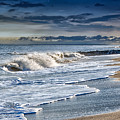 Edisto Island Beach by Carol Ward