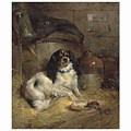 Edwin Douglas 1848-1914 A Cavalier King Charles Spaniel by Edwin Douglas
