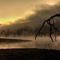 Eerie Dawn by Lori Deiter