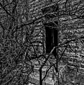Eerie Entrance To An Old School by Sue Smith