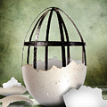 An Egg by Arvydas Butautas
