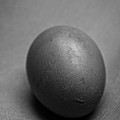 Egg Black And White by Edward Fielding