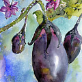 Eggplant And Blossoms Food Art Watercolors by Ginette Callaway