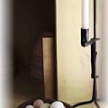 Eggs And Candlestick by Nelson Strong
