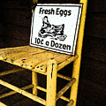 Eggs For Sale by Lori Mellen-Pagliaro