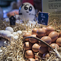 Eggsactly What You Are Looking For - La Bouqueria - Barcelona Spain by Jon Berghoff