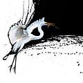 Egret 2 by Sandi Baker