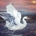 Egret by Diann Baggett
