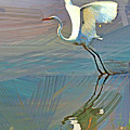 Egret Getting Ready For Take Off by Geraldine Scull