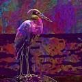 Egret White Bird Beach Wildlife  by PixBreak Art