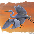 Egrets Great And Snowy by Larry Linton