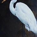 Egrets Series Four by Cynthia Satton