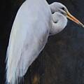 Egrets Series Three by Cynthia Satton