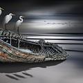 Egrets Watching by Nasser Osman