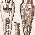 Egyptian Mummy, Illustration by Wellcome Images