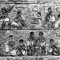 Egyptian Writing by David Lee Thompson