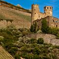 Ehrenfels Castle Ruin by Jill Smith