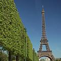 Eiffel Tower-9 by Milind Ketkar