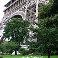Eiffel Tower Garden by Margie Wildblood