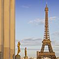 Eiffel Tower Paris Trocadero  by Melanie Viola