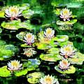 Eight #waterlilies by Michele Avanti