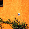 Eighteen On Orange Wall by Silvia Ganora