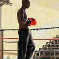 El Boxeador by Dawn Currie