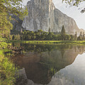 El Capitan In Reflection by Bill Roberts