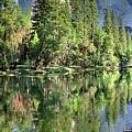 El Capitan Over The Merced River - Yosemite Valley by Bruce Lemons