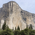 El Capitan Yosemite Valley Yosemite National Park by NaturesPix