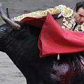 El Cid by Rafa Rivas