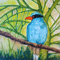 El Pajaro Del Agua Azul  by Patricia Arroyo