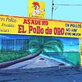 El Pollo De Oro by Dominic Piperata